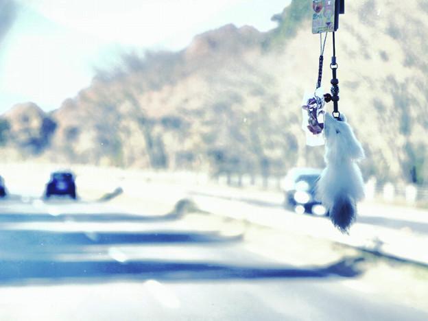 鬼怒川シリーズ・行きの車内のストラップ