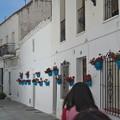 Photos: ミハス:アルガロボ通り(スペイン)