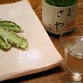 Photos: IMGP9554東広島市、福久長吟醸さやと四角豆のてんぷら