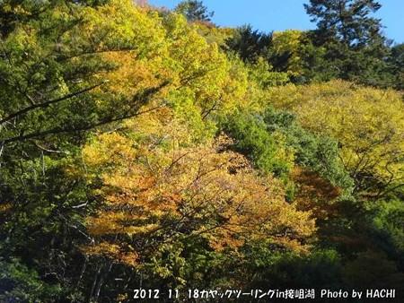 2012-11-18カヤックツーリングin接岨湖 (19)