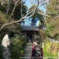 Photos: 2012-11-24ミカン狩り (7)
