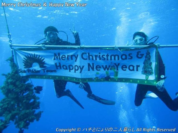 写真: Merry Christmas & Happy New Year