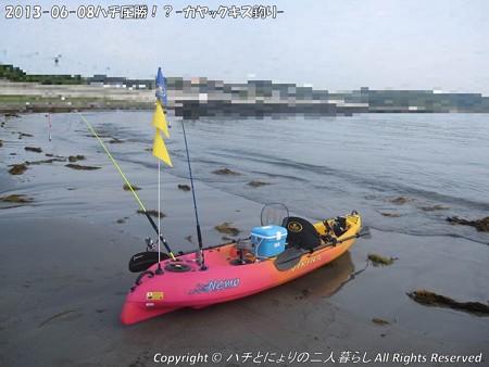 2013-06-08ハチ圧勝!?-カヤックキス釣り- (1)