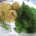 Photos: 2013-06-25ジャガイモの収穫 (1)