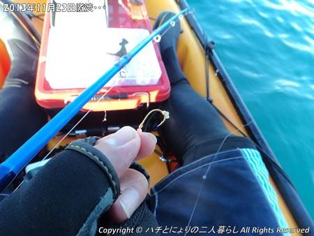 2013年11月23日激渋・・・ (8)