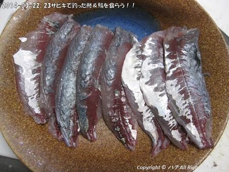 2014-03-22、23サビキで釣った鯵&鯖を食らう!! (7)