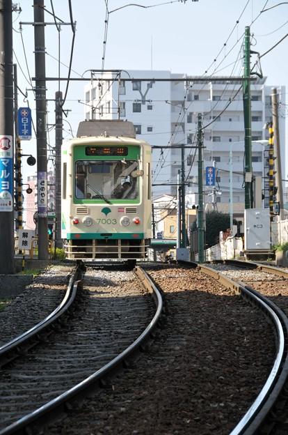 20130317-TDN-08