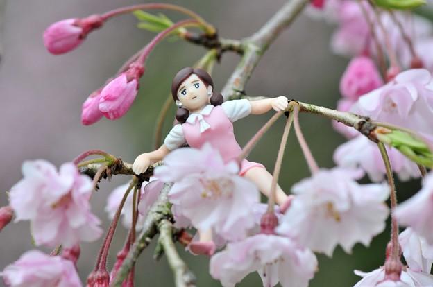 0406-花見のフチ子さん-04