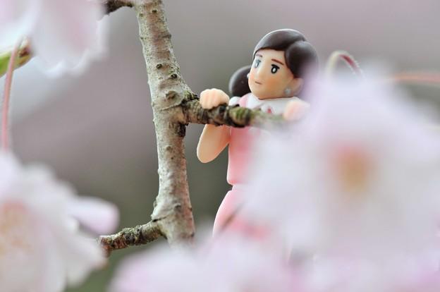 0406-花見のフチ子さん-09