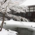 写真: 雪庭