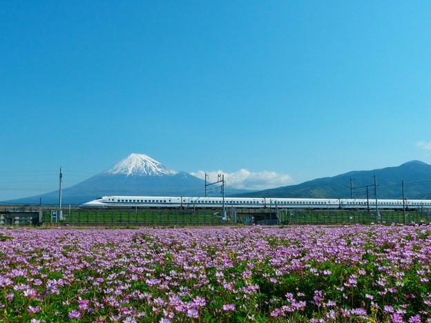 富士山と蓮華700系