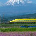 Photos: ドクターイエローと富士山