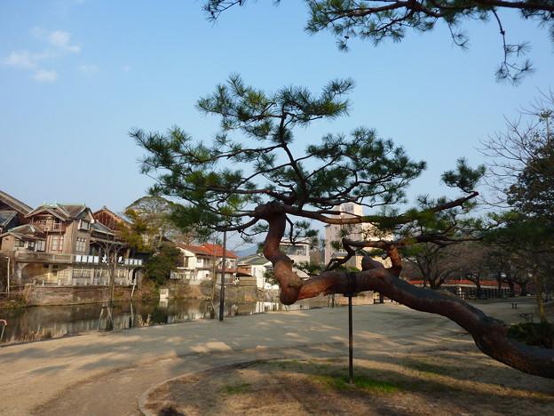 嬉野温泉公園