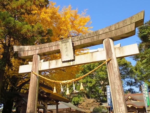 黄葉が迎える神社