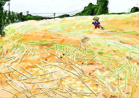 耕作放棄地の草刈り