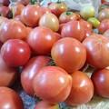 Photos: トマト収穫