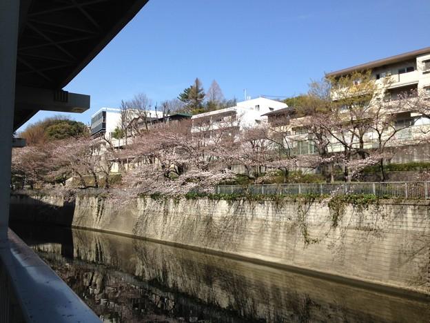 江戸川橋なう。