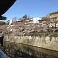Photos: 江戸川橋なう。