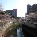Photos: 13.03.19.江戸川7(文京区)駒塚橋より東