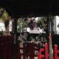 豊川稲荷3(文京区目白台1)