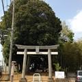 大間木氷川神社(緑区東浦和)