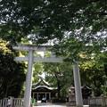 写真: 王子神社