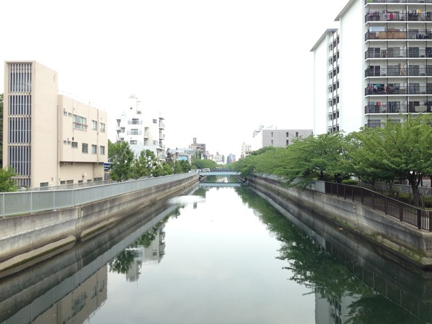 清川橋より仙台堀川。