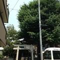 利田神社(東品川)