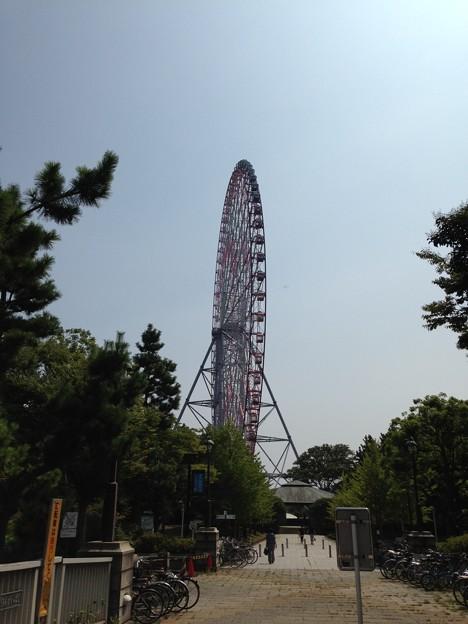 葛西臨海公園。