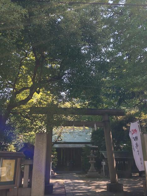 仲町氷川神社(千住仲町)