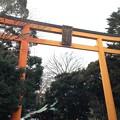 写真: 川越氷川神社 大鳥居