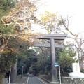 Photos: 寒川神社 一の鳥居(神奈川県高座郡寒川町)