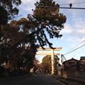 Photos: 寒川神社 二の鳥居(神奈川県高座郡寒川町)
