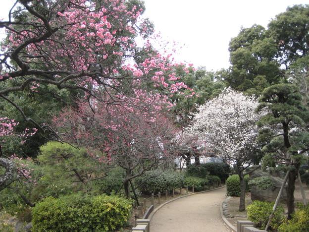 14.02.23.水戸徳川家下屋敷跡(区立隅田公園。墨田区向島)