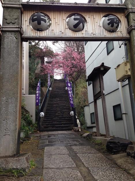 北野神社(牛天神。文京区春日)