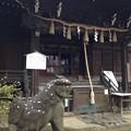 Photos: 白山神社(文京区白山)