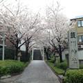 Photos: 14.04.03.簸川神社(文京区)