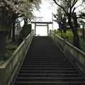 14.04.03.簸川神社(文京区)