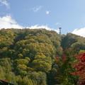Photos: photo465