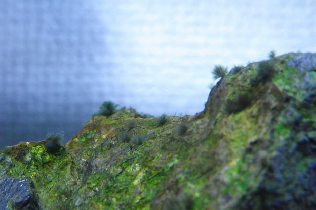 写真: 山頂