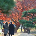 Photos: ~紅葉デート~