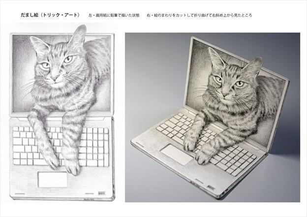 写真: パソから出て来るネコ・だまし絵