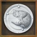 Photos: 時計になった猫