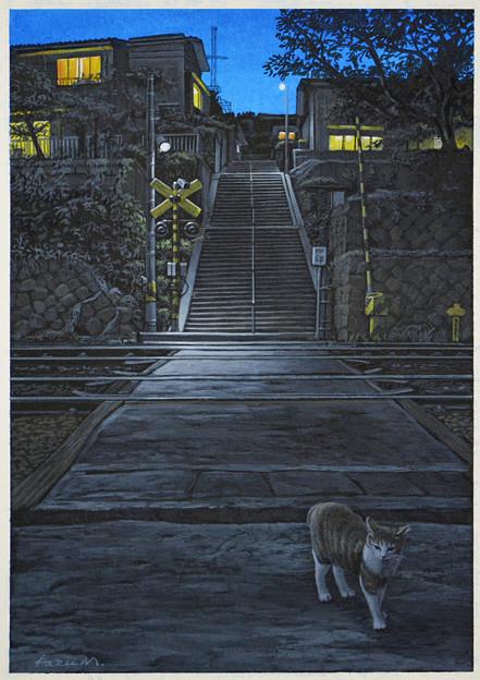 写真: 階段のある夜景・ねこ
