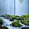 Photos: 幽玄の滝