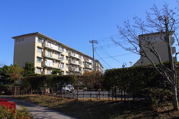 若松団地14