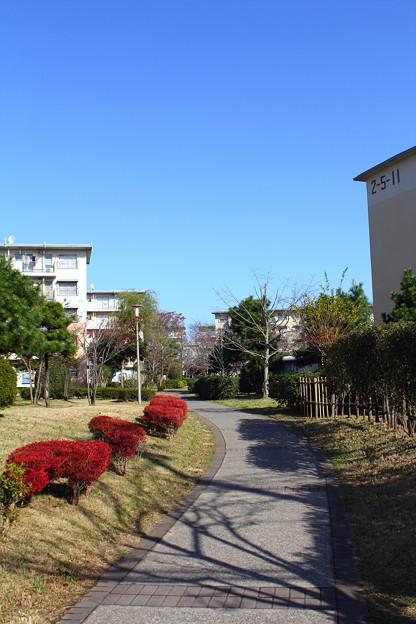 若松団地15
