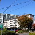 Photos: 若松団地18
