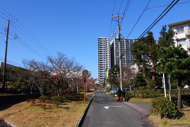 若松団地63