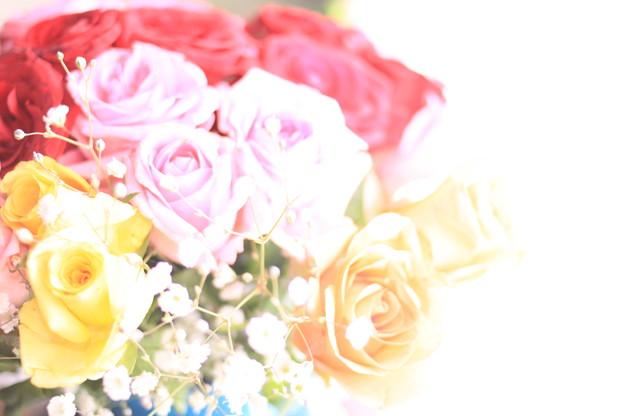 Photos: 花束(?)